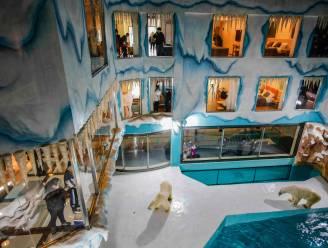 Omstreden ijsberenhotel in China opent de deuren
