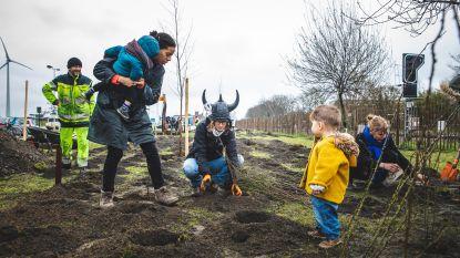 Buurtbewoners en Stad Gent planten 'Vikingbos' in de Muide