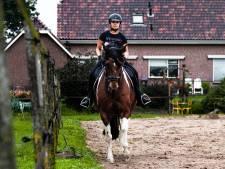 Ook de paardenmarkt is op hol geslagen: 'Je moet echt oppassen welk paard je koopt'