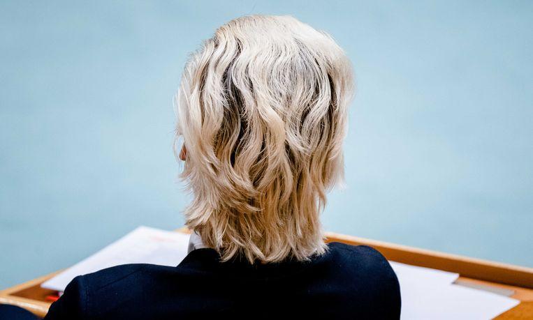 Geert Wilders (PVV) tijdens een debat over het aftreden van het kabinet naar aanleiding van de toeslagenaffaire.  Beeld ANP