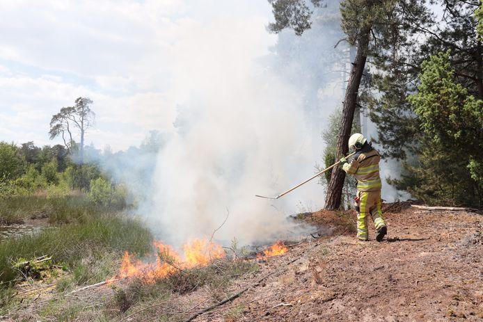 De brandweer had de natuurbrand bij Ommen snel onder controle.