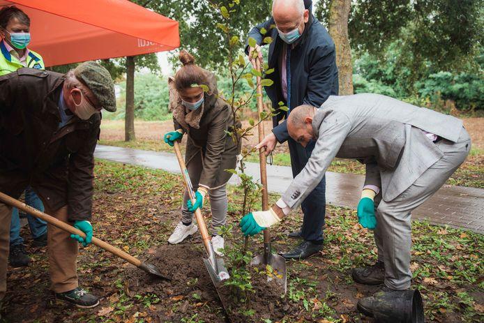 De eerste klimaatbomen krijgen een vaste stek in Alken, en ook Vlaams minister van Omgeving Zuhal Demir (N-VA) en Burgemeester Marc Penxten helpen een handje.