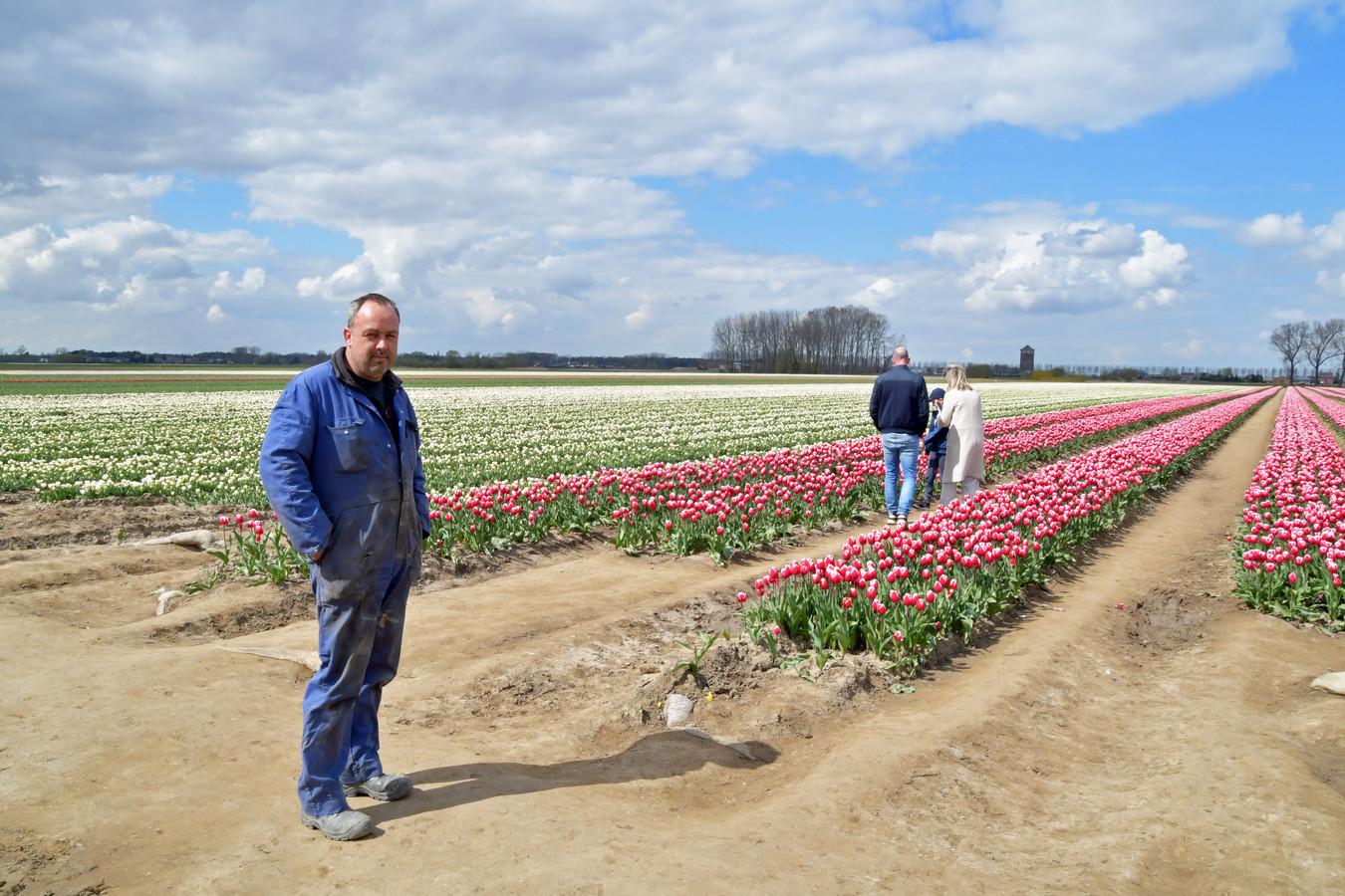Bollenkweker Pieter Suy uit Absdale ziet het met lede ogen aan dat zijn veld in Meerdonk gebruikt wordt als fotoshootterrein. Mensen nemen zelfs, honden, picknickmanden en extra kledingsets mee.