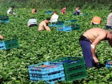 Dongen krijgt woonunits voor 16 migranten