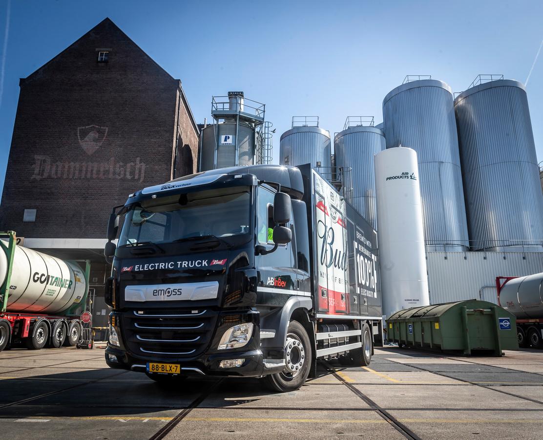 De inwoners van Dommelen-Zuid vrezen dat de stikstofuitstoot van de Dommelsch-brouwerij veel hoger wordt dan is toegestaan in het Natura 2000-gebied.