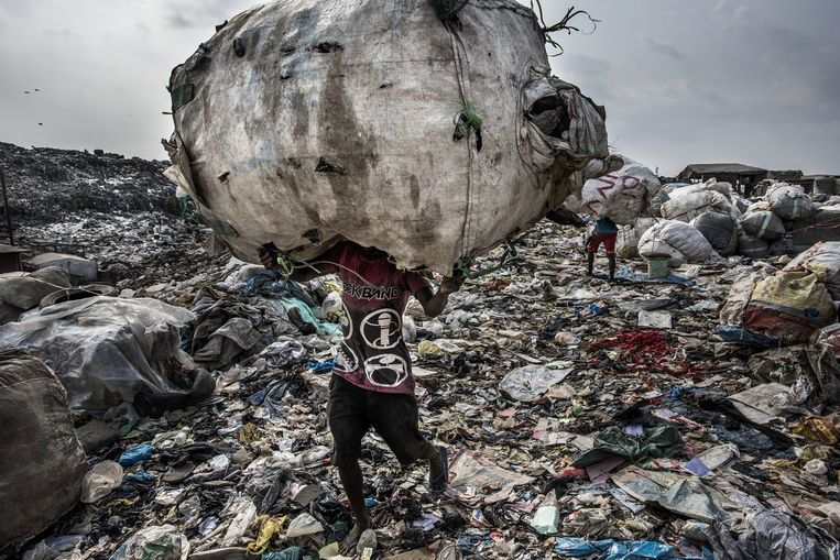 Er zijn ecosystemen die al zodanig verwoest zijn dat ze niet meer te herstellen zijn. Beeld RV - Kadir van Lohuizen / NOOR