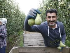 'Syriërsproject' moet beter samenwerken met werkgevers