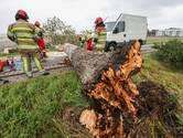 Zomerstorm plaagt dijken, bruggen, bomen en een busje in onze regio