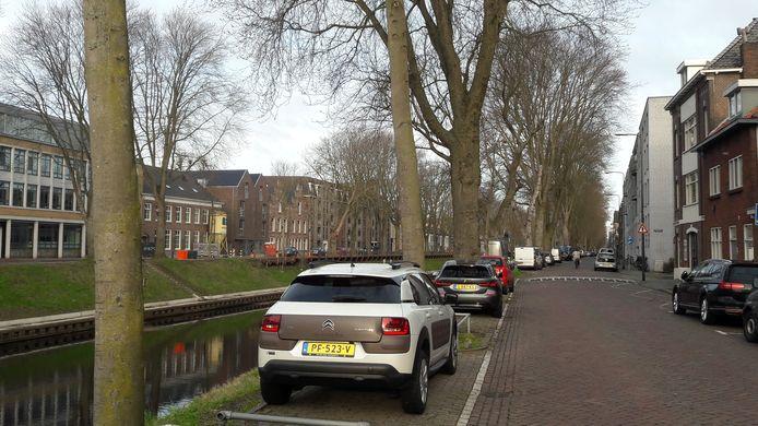 Langs de Zuid-Willemsvaart is nagegaan of  bomen omver moeten worden gehaald.
