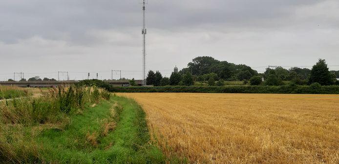 Een deel van het Stadsland, met op de achtergrond de spoorbrug en nog net zichtbaar de Lebuinus.
