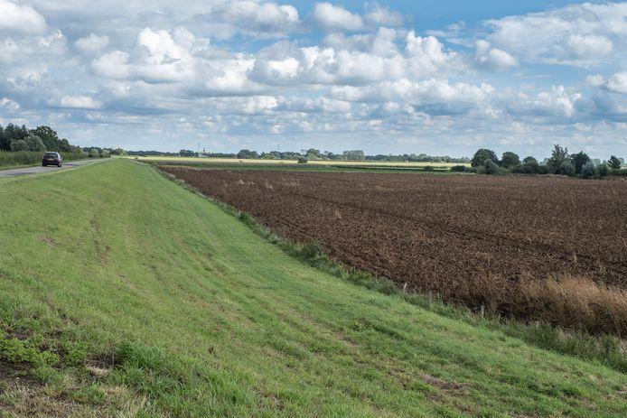 De weilanden die door De Wolff als 'zoekgebied' voor windmolens zijn aangewezen.