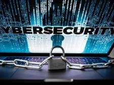 Dreiging cybercrime neemt toe, digitale beveilingsbedrijven schieten als paddenstoelen uit de grond