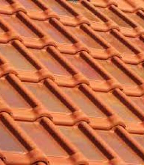 VVD Drimmelen breekt lans voor zonneceldakpannen