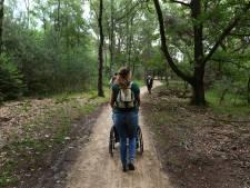 Groot wandelroutenetwerk in omgeving Veenendaal en Utrechtse Heuvelrug in de maak