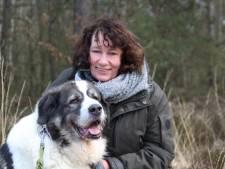 Hondentrainster uit Epe: 'Stop met het kopen van corona-honden, ze zijn levensgevaarlijk'