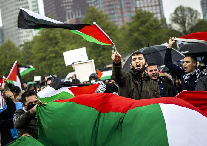Pro-Palestina-demonstratie op het Haagse Malieveld