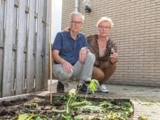Jan en Jannie krijgen van wildvreemden wietolie en zakken met wiet, maar medicinale wiet kweken is en blijft verboden