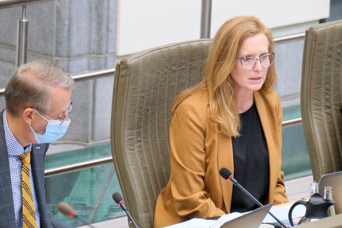 3M-vice-president Rebecca Teeters tijdens de hoorzitting in het Vlaams parlement.