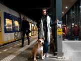 Hond Diego neemt op eigen houtje de trein