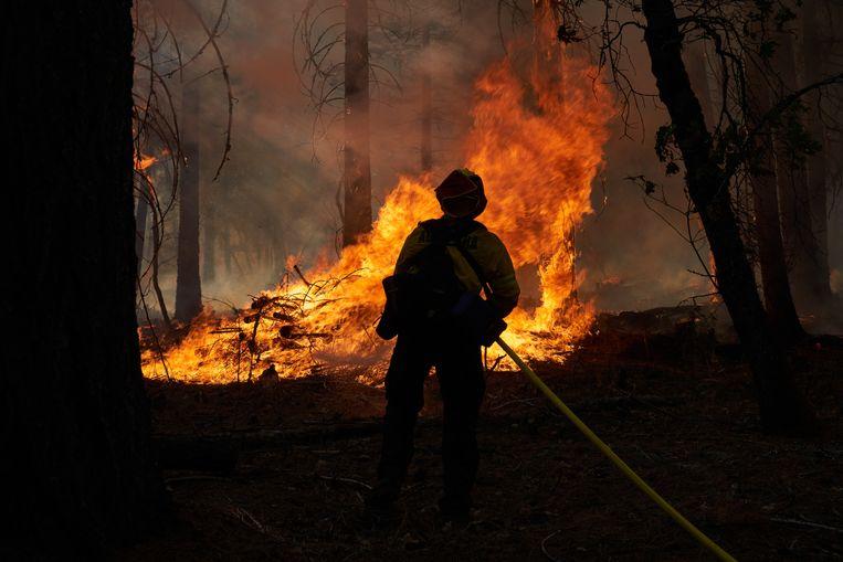 De 'Dixie Fire' raast door de Genesee Valley in Californië. Beeld Getty Images