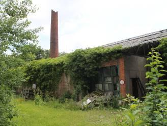 Nieuw leven voor oude katoenfabriek Textiles d'Eecloo: wonen, werken en groen, met respect voor erfgoed