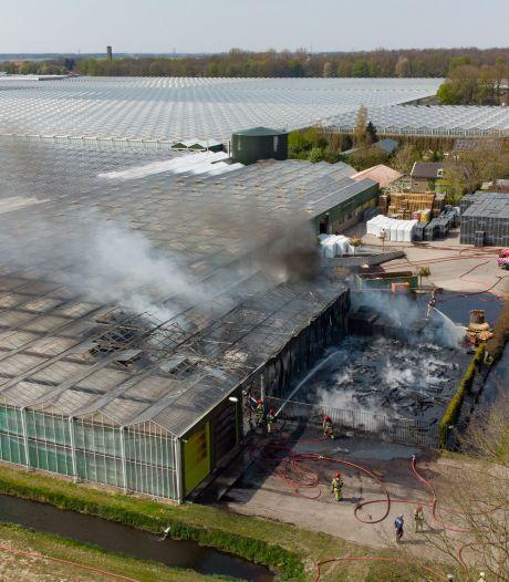 Kwekerij Baas in Ens na felle brand snel weer in bedrijf: 'Extreem belangrijk'