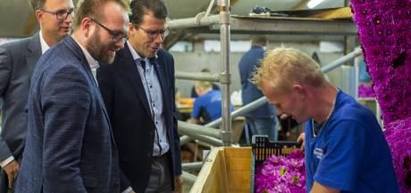 Rekkense bloemencorso beleeft Duitse editie
