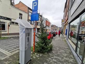 We parkeren (nog even) gratis in Halle: nieuw parkeerbeleid bestaat enkel op papier