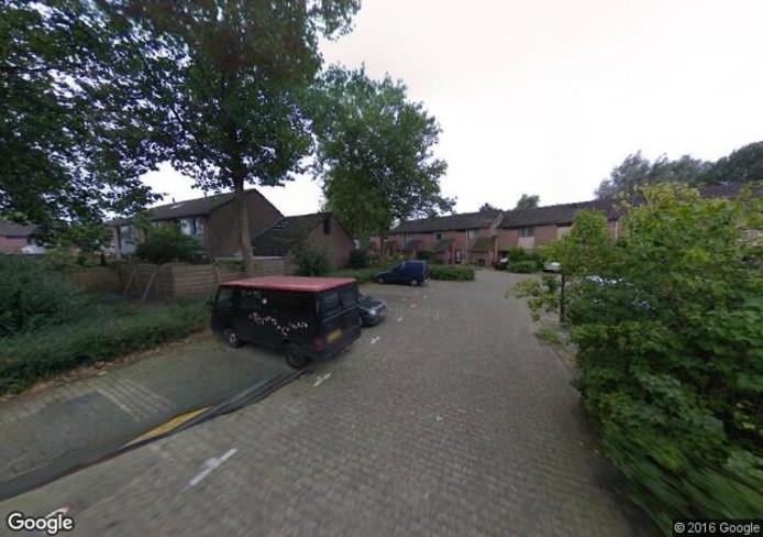Griffiersveld in Apeldoorn. foto: Google Streetview