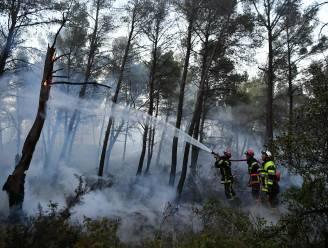 Franse politie pakt vermoedelijke brandstichter op in regio Marseille