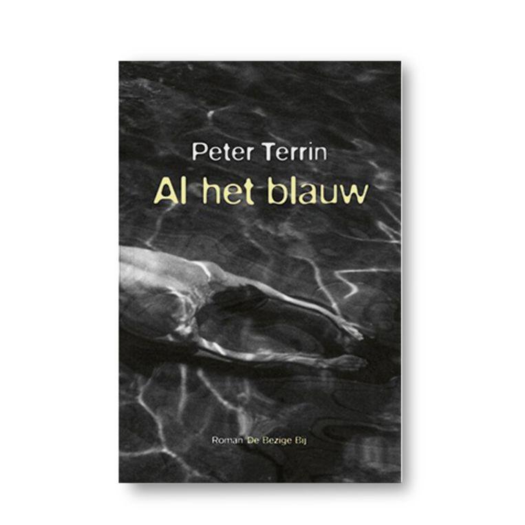 Al het blauw - Peter Terrin Beeld Uitgeverij De Bezige Bij