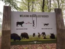 Infoborden natuurgebied de Maashorst beklad door tegenstanders grote grazers