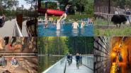 """Ondanks hitterecords is Toerisme Limburg positief: """"Minder gasten, maar ze blijven wel langer"""""""