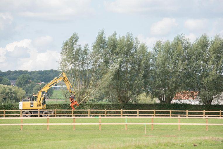 De voorbereidingen gaan alvast door: wilgenbomen op het terrein worden flink ingekort, want voor de vliegshow staan ze in de weg.