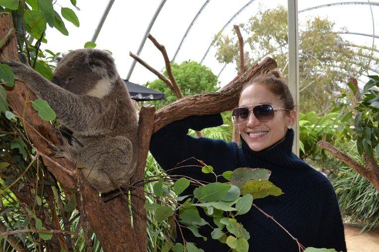 De Amerikaanse zangeres Jennifer Lopez in de dierentuin van Sydney op 15 december 2012. Beeld AFP