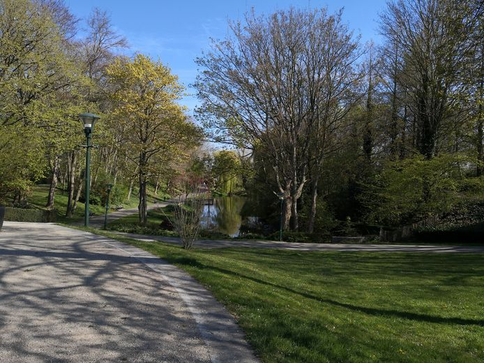Diksmuide wil zijn bomenbestand aanzienlijk uitbreiden.