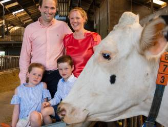 Op bezoek bij 160 koeien? De Koeboshoeve zet deuren open