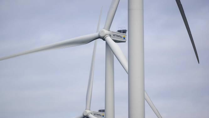 Rechter: kabinet moet milieu-effecten windmolenparken beoordelen