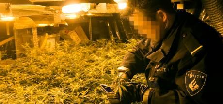 'Studenten sliepen naast wietkwekerijen in Breda, mannen stopten 12 jaar lang crimineel geld in panden'