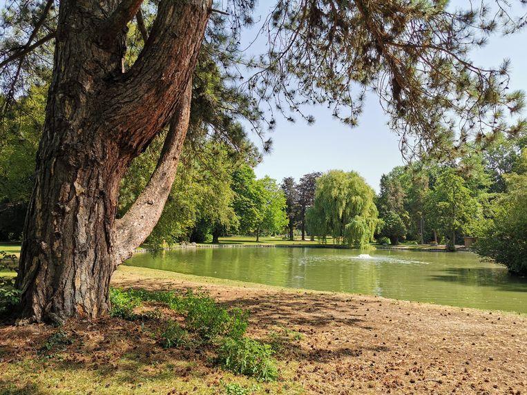 Het Neromhof wordt mogelijk nog eens uitgebreid met 10 hectare extra bos