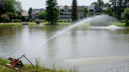 Hoezo waterschaarste? Wemmel bestrijdt botulisme in parkvijver met… vers leidingwater