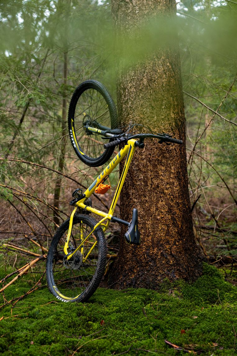De simpelste variant van de Giant mountainbike. Beeld Jordi Huisman