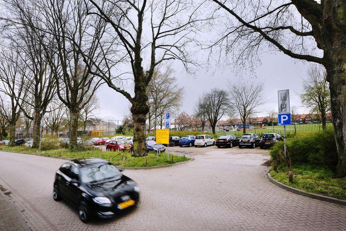 De onverharde parkeerstrook aan de Lovensdijkstraat gaat volgend jaar verdwijnen, en met haar waarschijnlijk ook enkele monumentale bomen.