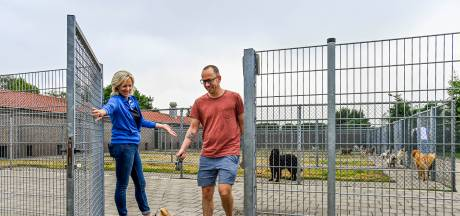 Drukke beestenboel bij de dierenpensions: 'Zelfs met Kerst en Oud en Nieuw hebben we al geen plek meer'