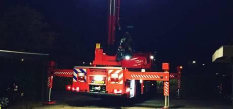 Brandweer leent hoogwerker om kat uit superhoge boom te halen