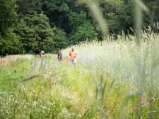 Wageningers zien ecologische akker in hun buurt wel zitten
