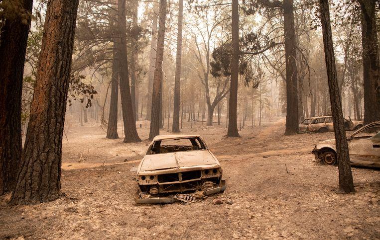 Verbrande auto's na bosbranden in Californië. Beeld Hollandse Hoogte / AFP