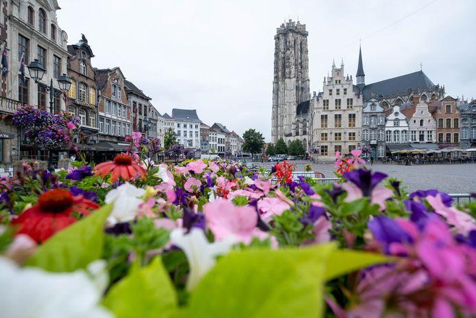 De Grote Markt van Mechelen met de Sint-Romboutskathedraal