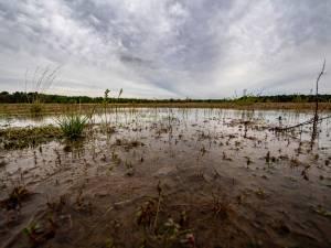 Hoe nat Nederland vorige week ook was: hier gelden nog maatregelen om water vást te houden