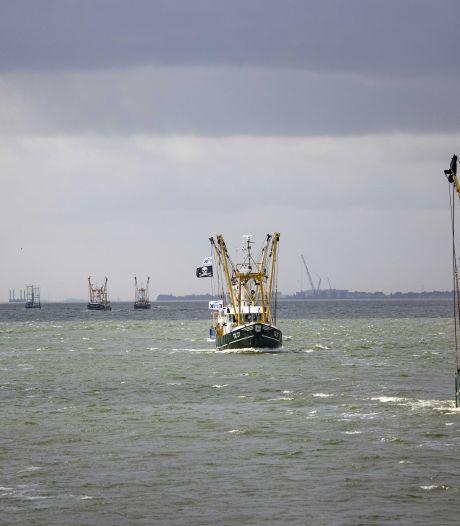 Alarm om laatste vissers op het IJsselmeer: blijft voldoende ruimte over voor vangen van paling?